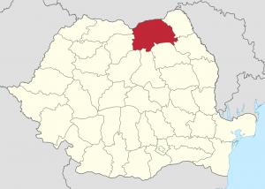 firme de catering din judetul Suceava