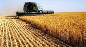 Firme de agricultura din judetul Prahova