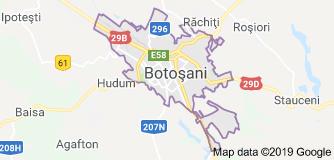 firme de transport din Botosani