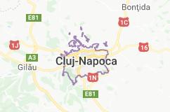 firme IT Cluj-Napoca