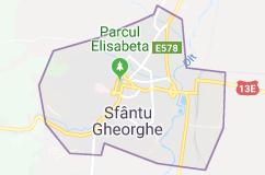 firme IT Sfantu Gheorghe