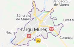firme IT Targu Mures