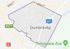 firme de transport din Dumbravita