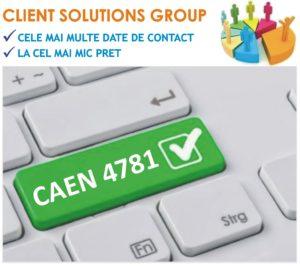 baza de date firme companii CAEN 4781