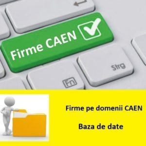 Companii Firme pe domenii CAEN