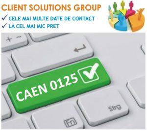 baza de date firme companii CAEN 0125